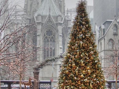 Christmas Tree Lotte New York Palace