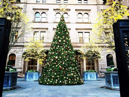 Christmas Tree Lotte New York Palace